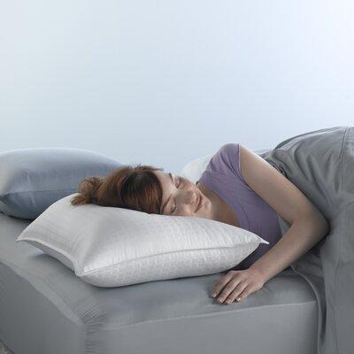 Spring Air�Wont Go Flat� Fiber and Foam Pillow Size: 20 x 28