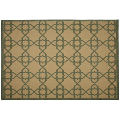 Antebellum Green Geometric Indoor/Outdoor Area Rug Rug Size: 7 x 10
