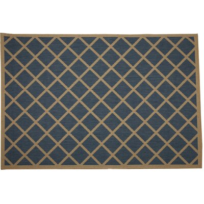 Eells Blue Geometric Indoor/Outdoor Area Rug Rug Size: Rectangle 2 x 3