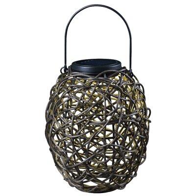 Tangle Solar Hanging Lantern in Black