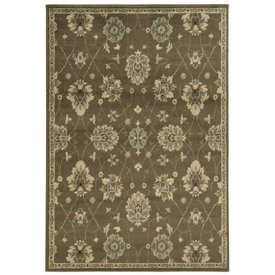 Aldan Brown/Beige Area Rug Rug Size: Runner 11 x 73