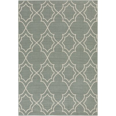 Amato Green Indoor/Outdoor Area Rug Rug Size: 5'3