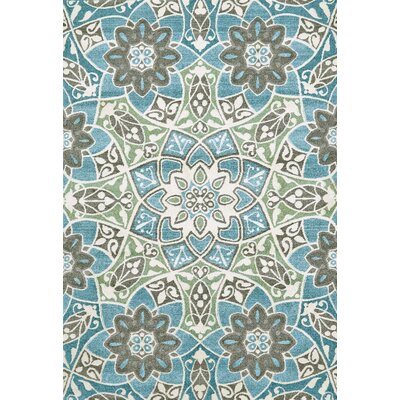 Dowdell Aqua Area Rug Rug Size: Rectangle 22 x 4