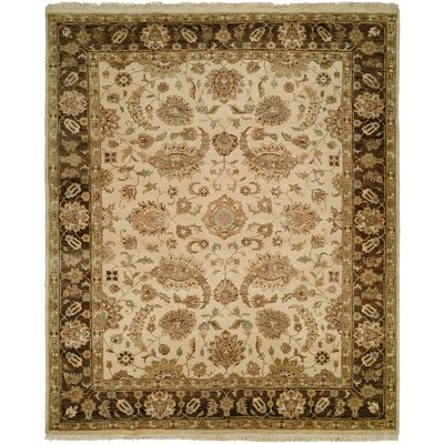 Ali Hand-Knotted Ivory/Brown Area Rug Rug Size: Rectangle 5 x 7