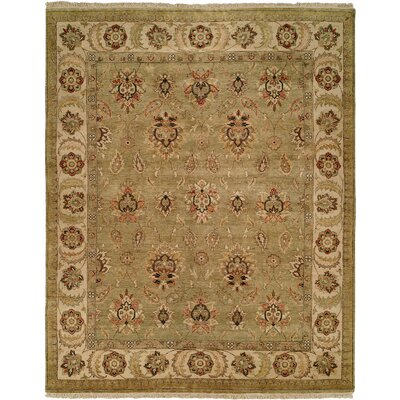 Jubail Hand-Knotted Green/Ivory Area Rug Rug Size: Rectangle 4 x 6