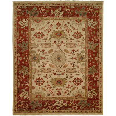 Hidd Hand-Knotted Ivory/Red Area Rug Rug Size: Rectangle 6 x 9