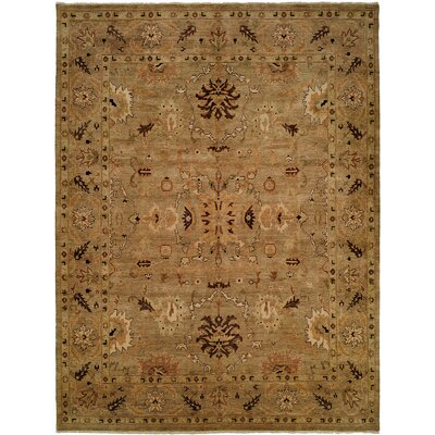 Eritrea Hand-Knotted Brown Area Rug Rug Size: 10 x 14