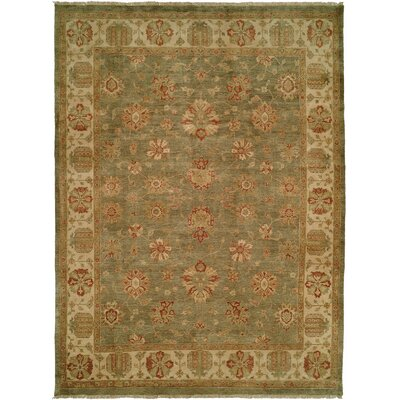 Buenaventura Hand-Knotted Green/Ivory Area Rug Rug Size: Rectangle 4 x 6