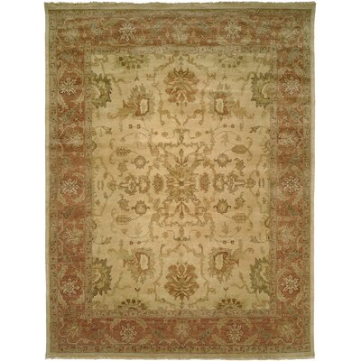San Lucas Hand-Knotted Ivory Area Rug Rug Size: Rectangle 5 x 7