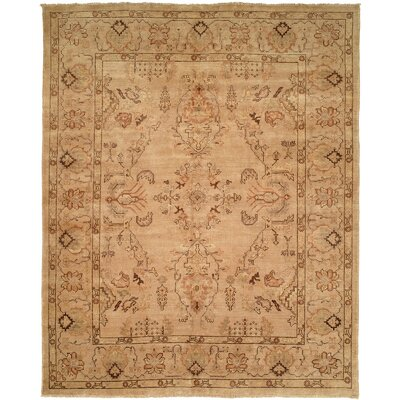 Puntarenas Hand-Knotted Beige Area Rug Rug Size: Rectangle 5 x 7