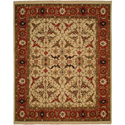 Peru Hand-Woven Ivory/Brown Area Rug Rug Size: Rectangle 6 x 9