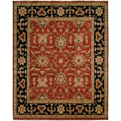 Chile Hand-Knotted Rust/Black Area Rug Rug Size: 5 x 7