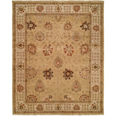 Kobe Hand-Knotted Gold Area Rug Rug Size: Rectangle 10 x 14