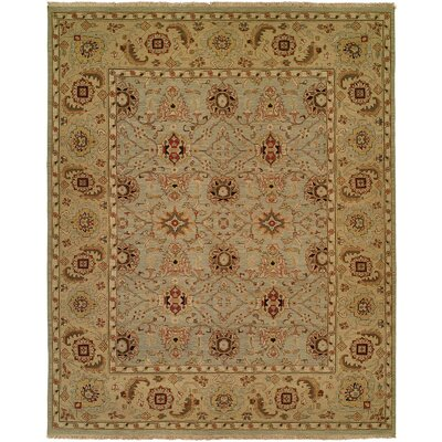 Mazatlan Hand-Woven Brown Area Rug Rug Size: Rectangle 4 x 8
