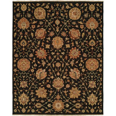 San Lorenzo Hand-Woven Black/Brown Area Rug Rug Size: Rectangle 5 x 7