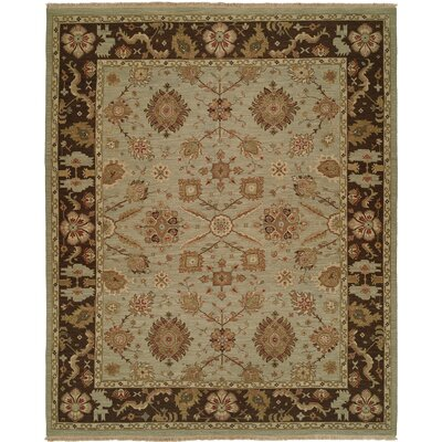 Valparaiso Hand-Woven Beige/Brown Area Rug Rug Size: Rectangle 6 x 9
