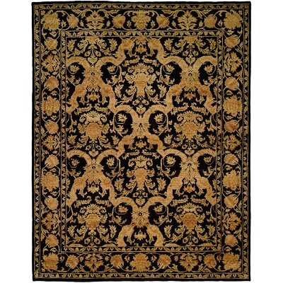 Anchorage Hand-Knotted Black/Gold Area Rug Rug Size: 4 x 6