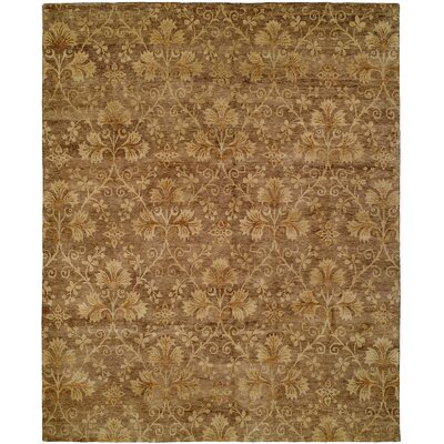 Dongying Hand-Knotted Brown Area Rug Rug Size: 4 x 6