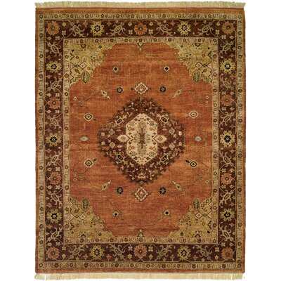 Hay Hand-Knotted Brown/Orange Area Rug Rug Size: 4 x 6