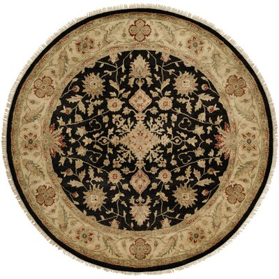Wuhan Hand-Knotted Black/Ivory Area Rug Rug Size: Rectangle 5 x 7