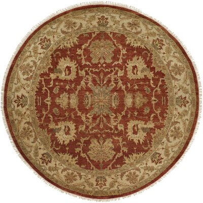 Pichilingue Hand-Knotted Rust/Ivory Area Rug Rug Size: Rectangle 4 x 6