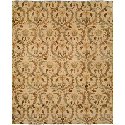 Hand-Knotted Beige Area Rug Rug Size: 4 x 6