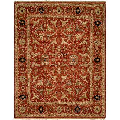 Hand-Knotted Rust Area Rug Rug Size: Rectangle 6 x 9