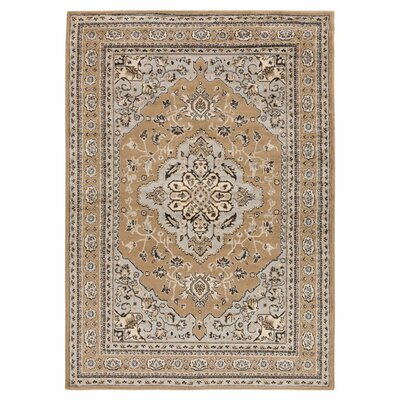 Market Ivory Area Rug Rug Size: Rectangle 53 x 76