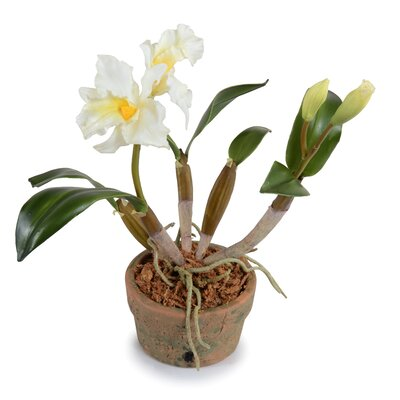 Faux Cattleya Orchid Flower in Pot
