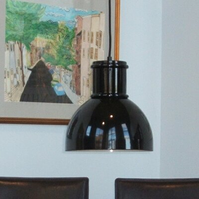 Turin Metal Pendant Light Finish: Black