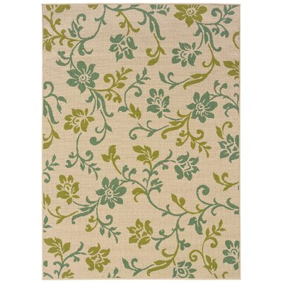 Newfield Ivory/Green Indoor/Outdoor Area Rug Rug Size: Rectangle 53 x 76