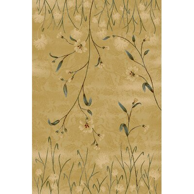 Bronnie  Beige Area Rug Rug Size: Rectangle 33 x 53
