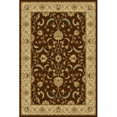 Catreena  Brown Area Rug Rug Size: Rectangle 910 x 1210