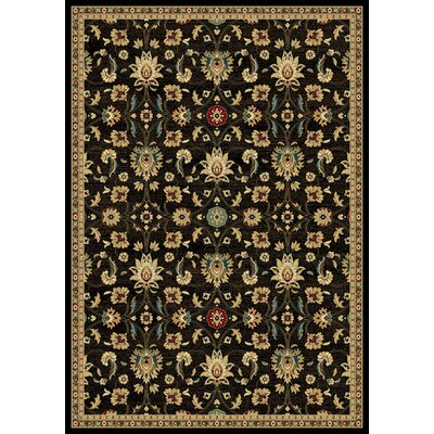 Callula  Black Area Rug Rug Size: Rectangle 53 x 77