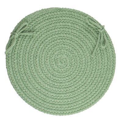 Sophisticated Chair Pad Color: Celadon