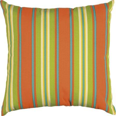 Clarinda Indoor/Outdoor Floor Pillow Color: Capri