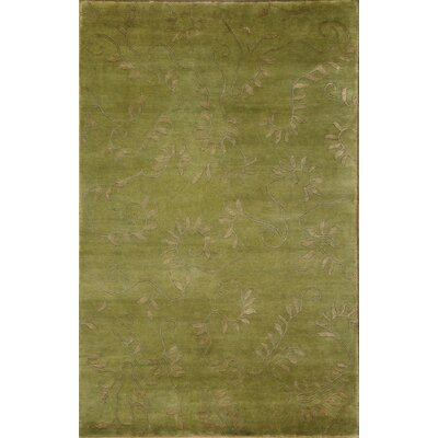 Soho Hand-Knotted Green/Beige Area Rug Rug Size: 5 x 8