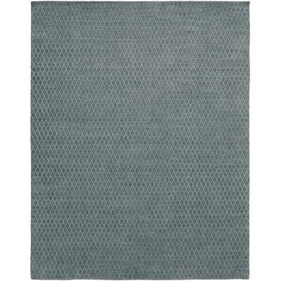 Hand-Woven Gray Area Rug Rug Size: 8 x 10