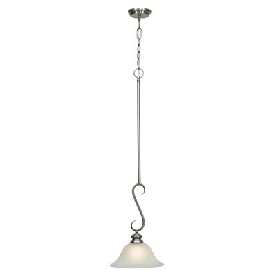 Tierra 1-Light Mini Pendant Finish: Pewter