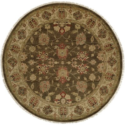 Caldera Hand-Knotted Beige/Brown Area Rug Rug Size: Rectangle 4 x 6