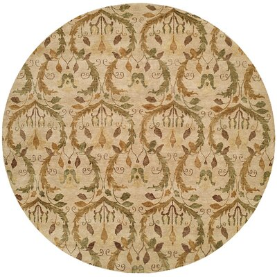 Hand-Knotted Beige Area Rug Rug Size: Rectangle 4 x 6