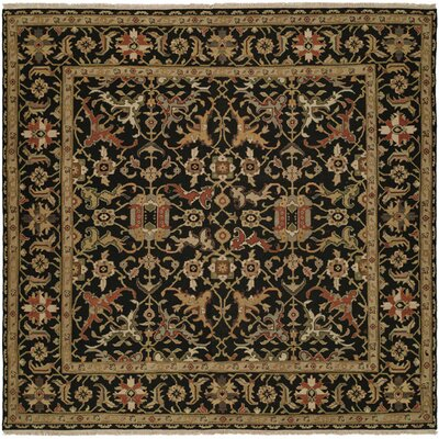 Napier Hand-Woven Black/Brown Area Rug Rug Size: Square 6