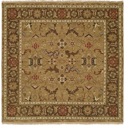 Antofagasta Hand-Woven Gold/Brown Area Rug Rug Size: Square 6