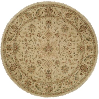 Dubai Hand-Knotted Beige Area Rug Rug Size: Rectangle 5 x 7