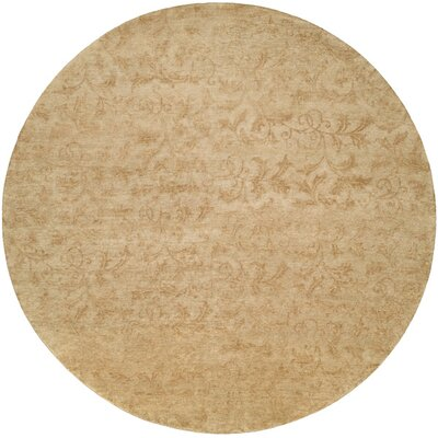 Nome Hand-Knotted Beige Area Rug Rug Size: Rectangle 4 x 6
