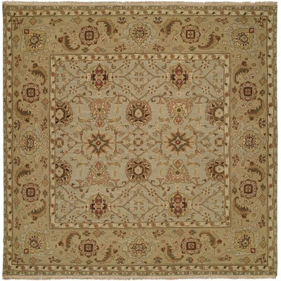 Mazatlan Hand-Woven Brown Area Rug Rug Size: Square 6