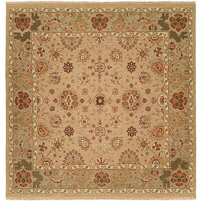 Tokyo Hand-Woven Ivory Area Rug Rug Size: Rectangle 12 x 18