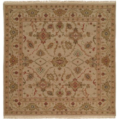 Hand-Knotted Brown Area Rug Rug size: Square 6