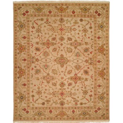 Hand-Knotted Beige Area Rug Rug Size: 12 x 18