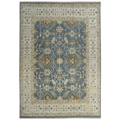 Serapis Hand-Knotted Blue/Brown Area Rug